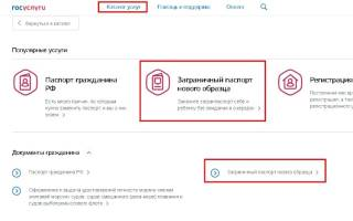 Заявление на загранпаспорт на сайте Госуслуг: как заполнить и отправить анкету через интернет?