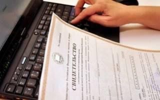 Образец заявления на дарение квартиры, дополнительного договора и прочих бумаг, нужных для сделки