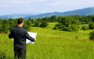 Как, где и кто может заказать кадастровую выписку на земельный участок в электронном виде?
