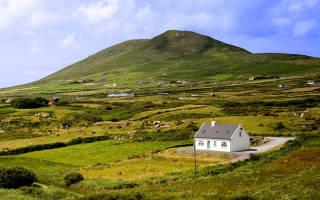 Порядок предоставления земельных участков: как бесплатно получить землю от государства?