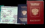 Как происходит получение гражданства РФ по программе переселения соотечественников? Алгоритм действий