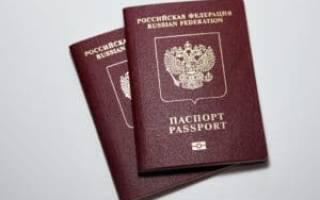 Оформление загранпаспорта нового образца через Госуслуги: необходимые документы и оплата госпошлины