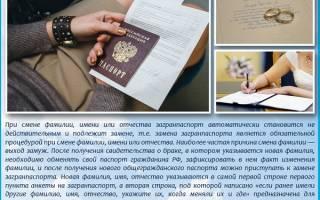 Вывоз ребенка за границу: нужен ли детям загранпаспорт в Турцию?