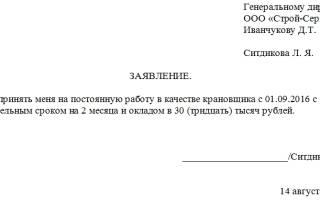 Как написать заявление о приеме на работу: пошаговая инструкция и образец документа
