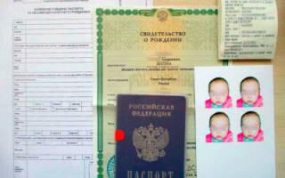 Выезжаем за рубеж с малышом — как сделать загранпаспорт ребенку до года?