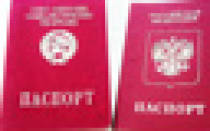 Какие основания для прекращения гражданства РФ существуют? Необходимые документы и порядок выхода