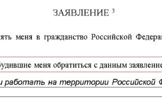 Как проходит заполнение заявления на гражданство РФ в упрощенном порядке: пишем по образцу