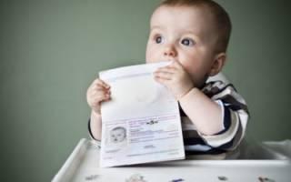 В каких случаях загранпаспорт обязателен и нужен ли он ребенку до 14 лет: все нюансы