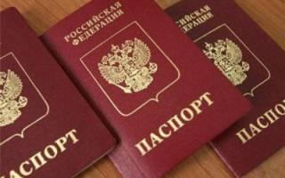 План действий: что нужно делать после получения гражданства РФ? Особенности замены некоторых документов