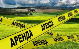 На что придется потратиться и какие документы нужны, чтобы взять землю в аренду под фермерское хозяйство